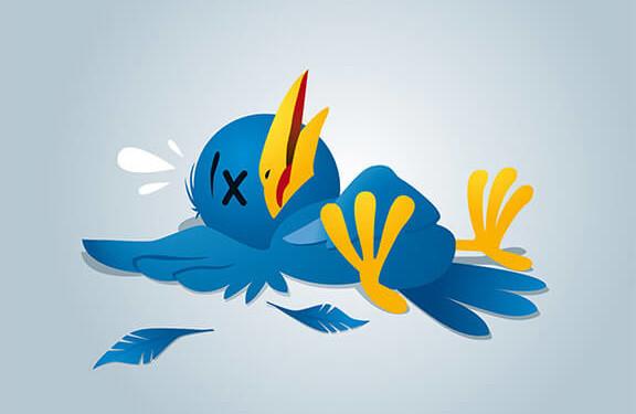 more twitter followers